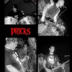 PRiCKS_promo_pic