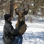 af deer head sm