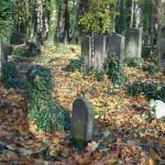 berlin graves 4